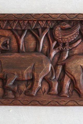 sademetsän eläimiä afrikassa